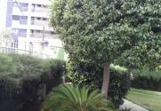 Condomínio Terra de Santa Cruz - Foto